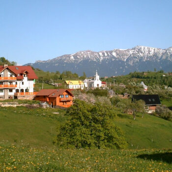 Carpathian Nature Tours